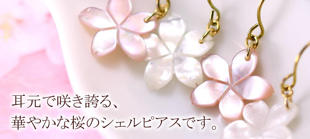 winter-osusume-cat.jpg
